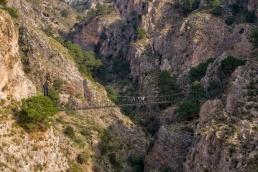 El Saltillo - Puente Colgante